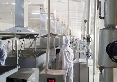 máy sấy rau củ công nghiệp Hải Đăng